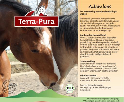 Kruiden voor paarden: Ademloos