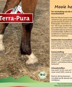 Kruiden voor paarden: Mooie hoeven
