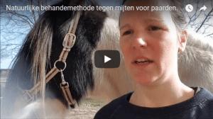 mijten bij paarden vlog pure horse natuurlijk behandeling parasieten