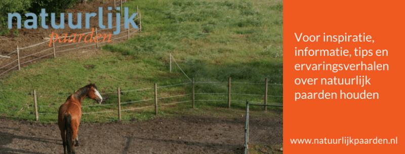 natuurlijkpaarden.nl natuurlijk paarden pure horse blogs