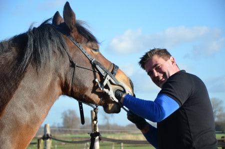 paarden tandarts Huub rietberg voeding