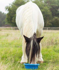 pure horse box maaltijd box paddy, biologisch