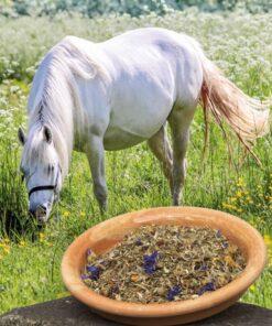 season fit box, zomerkruiden, pure horse, okapi, kruiden voor je paard, gezonde paarden voeding
